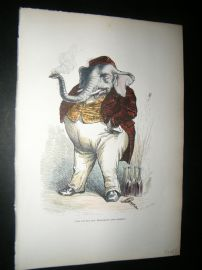 Grandville des Animaux 1842 Hand Col Print. Great Elephant
